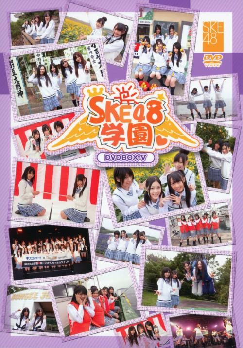 【中古】5.SKE48学園 BOX 【DVD】/SKE48
