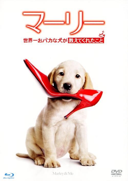 【中古】初限)マーリー 世界一おバカ…特別篇 DVD+BDセット 【ブルーレイ】/オーウェン・ウィルソン