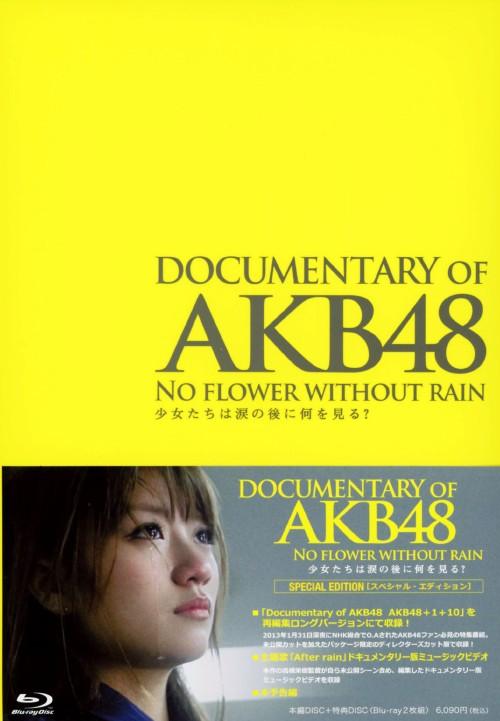 【中古】DOCUMENTARY OF AKB48 NO FLOWER WI…SP・ED 【ブルーレイ】/AKB48