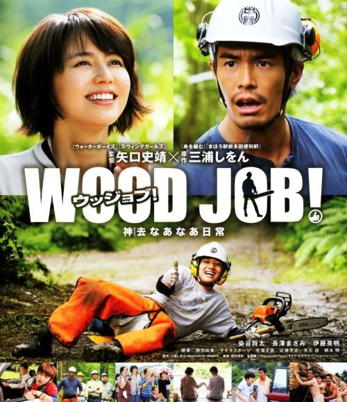 【中古】WOOD JOB! 神去なあなあ日常 スタンダード・ED 【ブルーレイ】/染谷将太