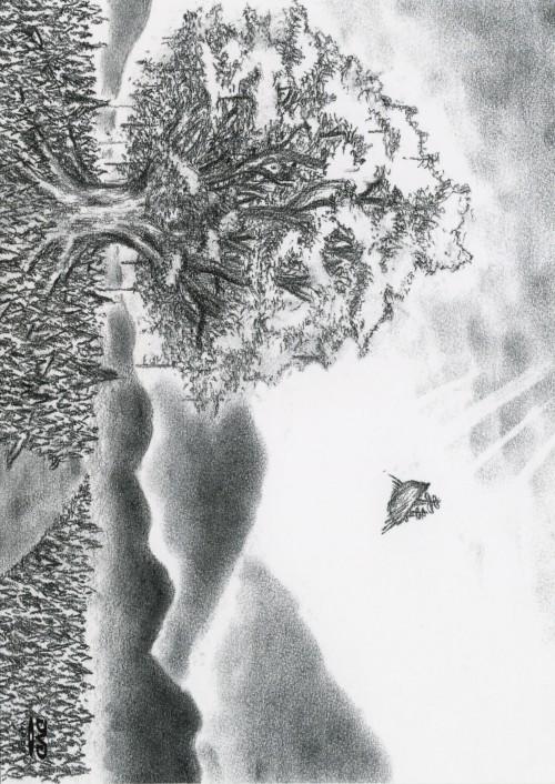 【中古】ユグドラシル 【DVD】/BUMP OF CHICKEN