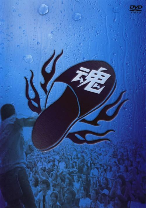 【中古】グループ魂の雨の野音(晴天決行) 【DVD】/グループ魂