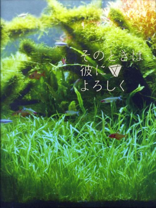 【中古】そのときは彼によろしく SP・ED 【DVD】/長澤まさみ