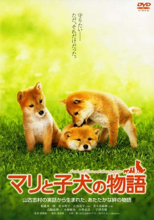 【中古】マリと子犬の物語 スタンダード・ED 【DVD】/船越英一郎