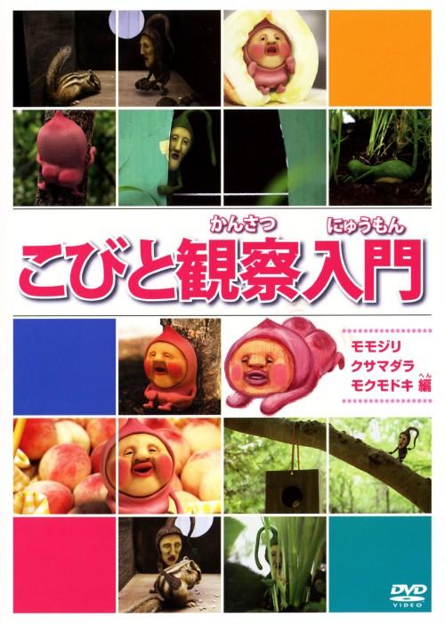 【中古】こびと観察入門 モモジリ クサマダラ モクモドキ編 【DVD】
