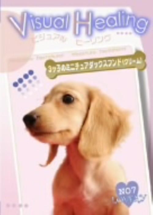 【中古】11.Visual Healing 3ッ子のミニチュアダックスフント 【DVD】