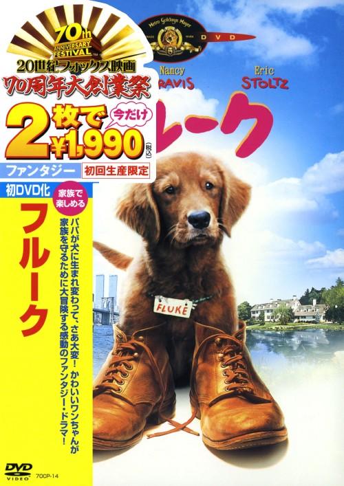 【中古】初限)フルーク 【DVD】/マシュー・モディーン