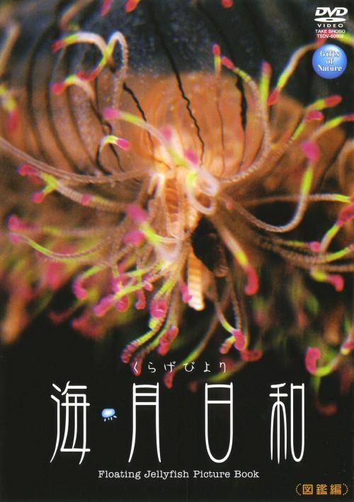 【中古】海月日和 図鑑編 【DVD】