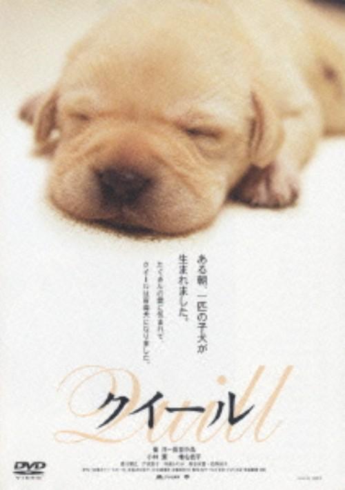【中古】クイール 【DVD】/小林薫