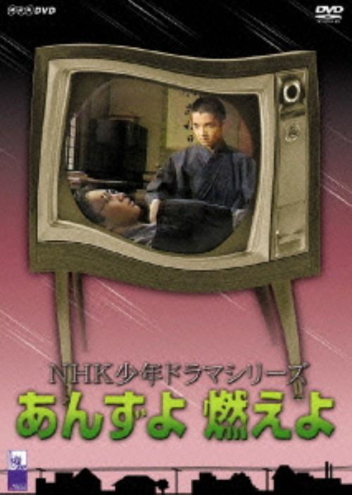 【中古】あんずよ 燃えよ 【DVD】/宮廻夏穂