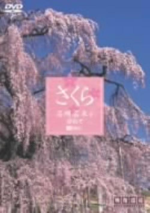 【中古】さくら 名所名木を訪ねて 【DVD】
