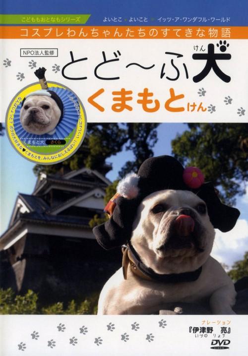 【中古】とど〜ふ犬 くまもとけん 【DVD】