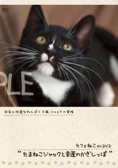 【中古】カフェねこonDVD たまねこジャックと幸運のかぎ… 【DVD】