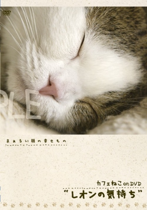【中古】カフェねこonDVD レオンの気持ち 【DVD】