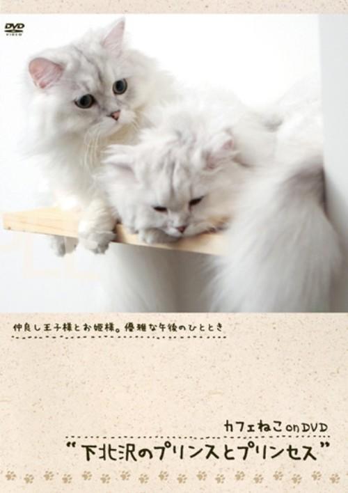 【中古】カフェねこonDVD 下北沢のプリンスとプリンセス 【DVD】
