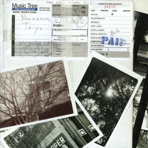 【中古】music tree/山沢大洋