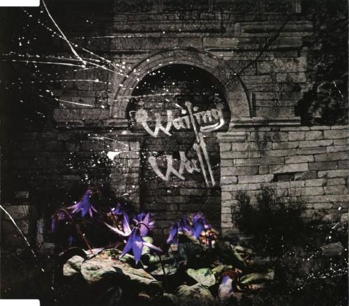 【中古】Wailing Wall/SCREW