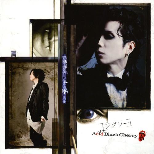 【中古】ジグソー/Acid Black Cherry