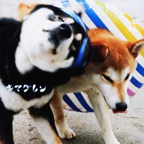 【中古】ALIVE(初回生産限定盤)(DVD付)/キマグレン