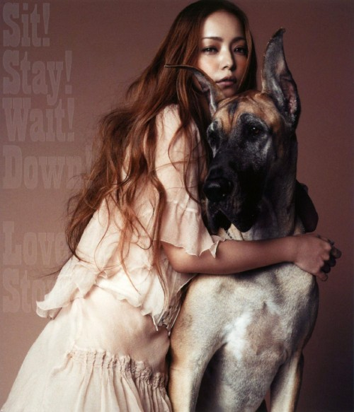 【中古】Sit!Stay!Wait!Down!/Love Story/安室奈美恵