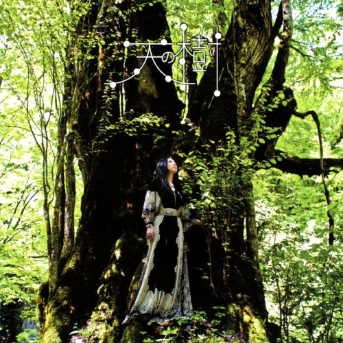 【中古】天の樹/天野月