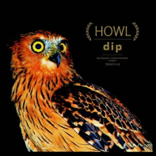 【中古】HOWL/dip