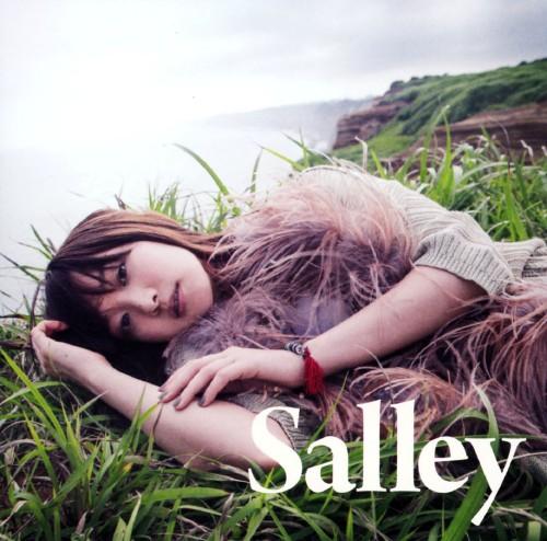 【中古】その先の景色を/Salley
