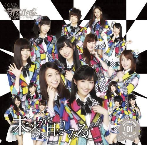 【中古】未来が目にしみる(一般発売 Ver.)(DVD付)/AKB48