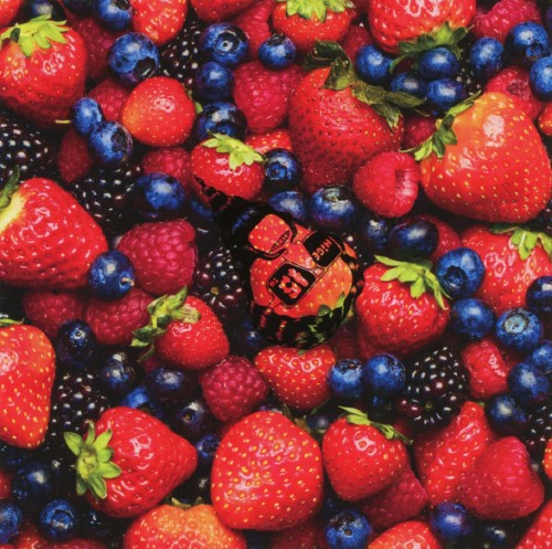 【中古】STRAWBERRY TIMES(Berry Best of HiGE)/髭