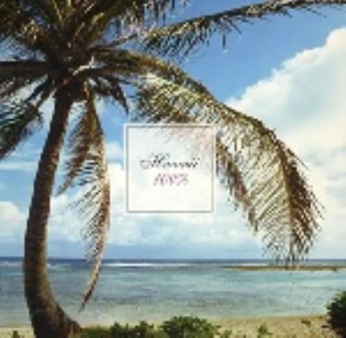 【中古】Resort Air ハワイ100%/オムニバス