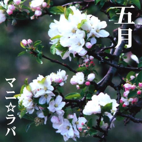 【中古】五月/マニ☆ラバ