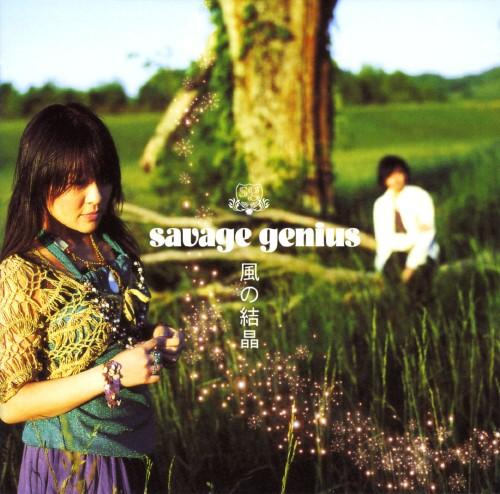 【中古】風の結晶/savage genius