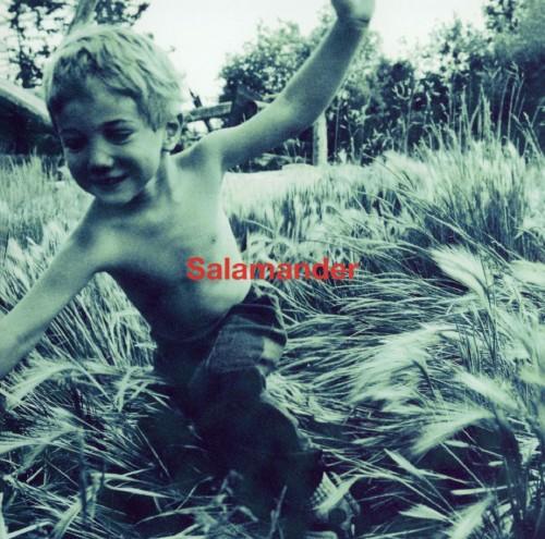 【中古】Salamander/ELLEGARDEN