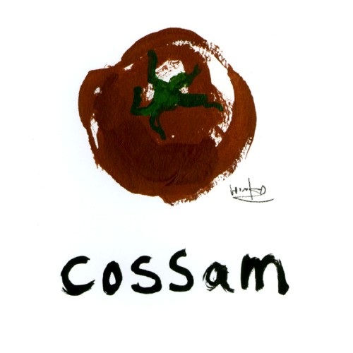 【中古】cossam/橋本優樹