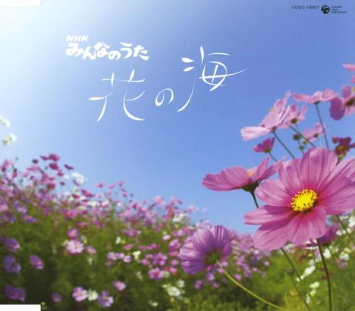 【中古】花の海/オムニバス