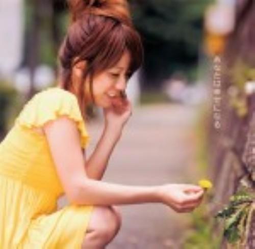 【中古】あなたは幸せになる/藤田麻衣子