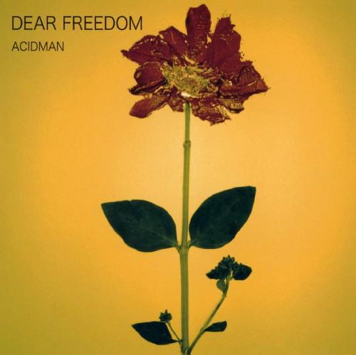 【中古】DEAR FREEDOM/ACIDMAN
