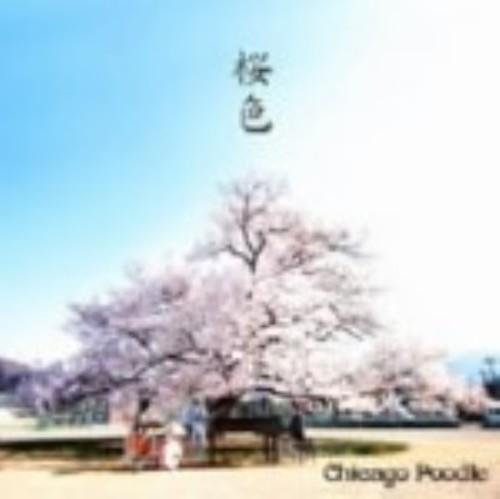 【中古】桜色(初回限定盤)(DVD付)/Chicago Poodle