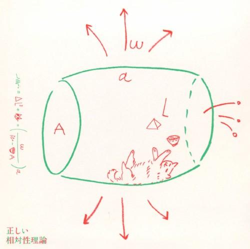 【中古】正しい相対性理論/相対性理論