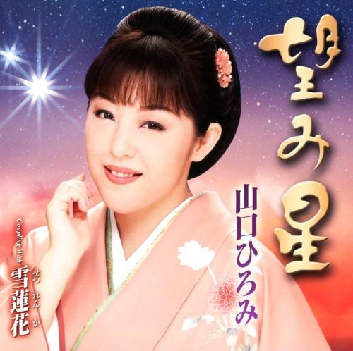 【中古】望み星/山口ひろみ