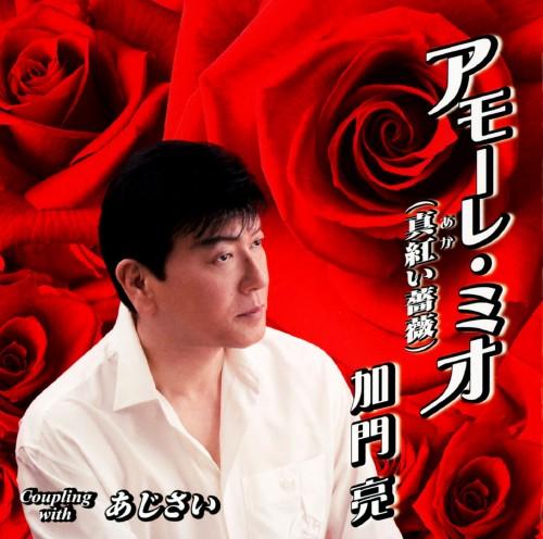 【中古】アモーレ・ミオ(真紅い薔薇)/あじさい/加門亮
