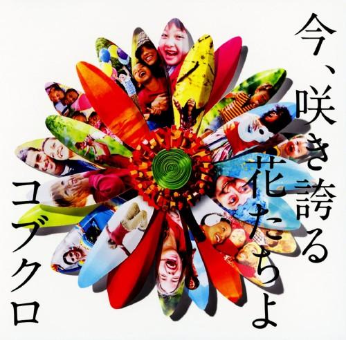 【中古】今、咲き誇る花たちよ/コブクロ