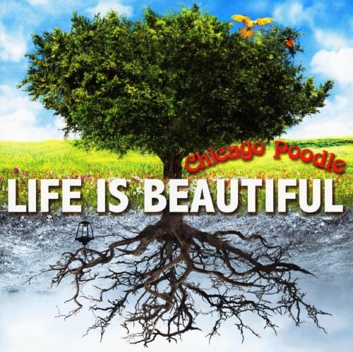 【中古】Life is Beautiful/Chicago Poodle