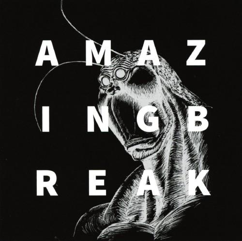 【中古】AMAZING BREAK/TERRASPEX