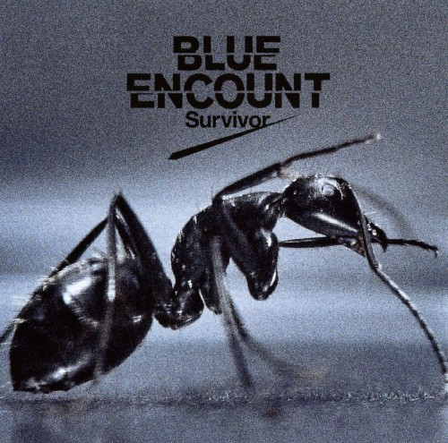 【中古】Survivor/BLUE ENCOUNT