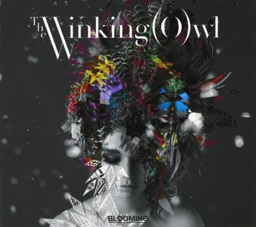 【中古】BLOOMING/Winking Owl