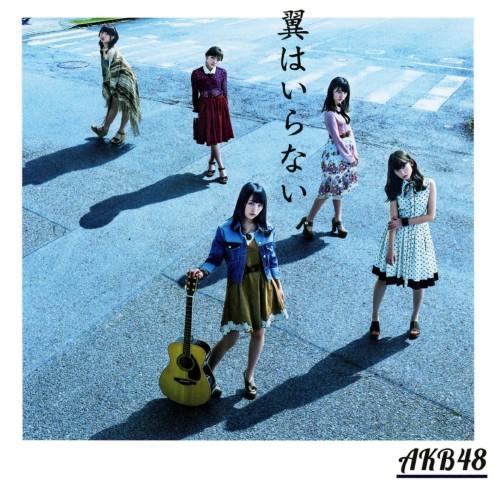 【中古】翼はいらない(DVD付)(Type A)/AKB48