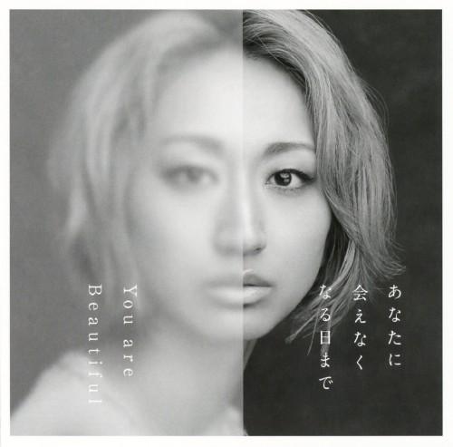【中古】あなたに会えなくなる日まで/You are Beautiful/Ms.OOJA