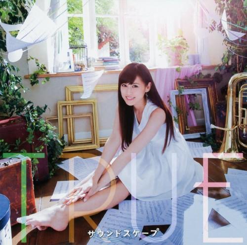 【中古】TVアニメ「響け!ユーフォニアム2」OP主題歌「サウンドスケープ」/TRUE